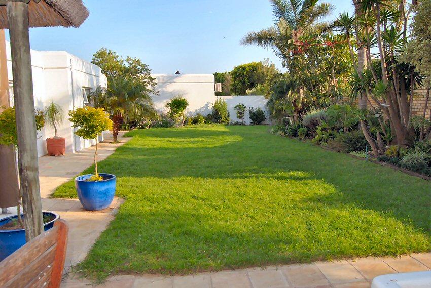 Garden-from-patio